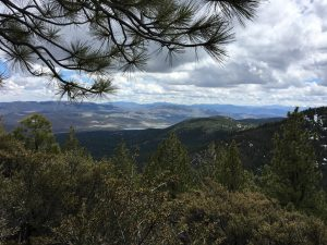 From the trail looking east over Washoe Valley.
